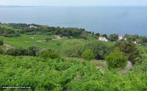 Views from Dingač down to Borak