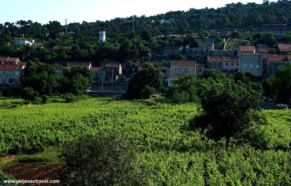 Panorama of Kuna, Peljesac