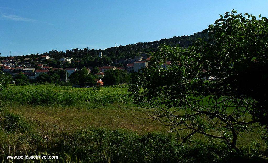 Early Spring in Kuna, Peljesac