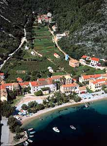 peljesac vinegroves