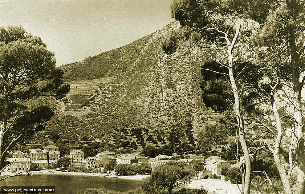 Old Photo of Trstenik, Peljes