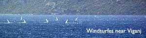 viganj-windsurfing2